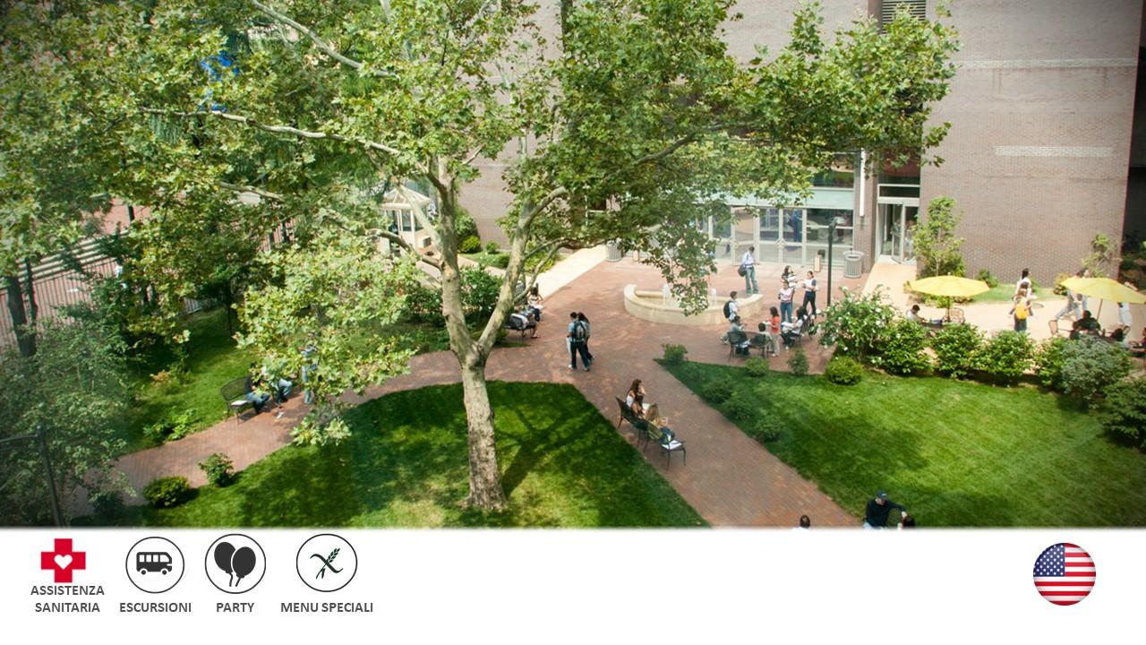New York – Long Island University